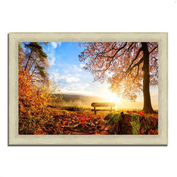 Framed Photograph Print 51 In. x 36 In. Warmly Illumining Multi Color