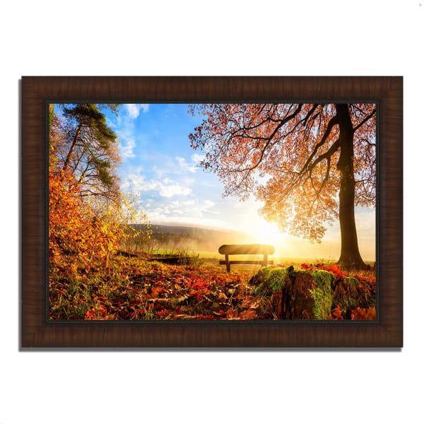Framed Photograph Print 63 In. x 44 In. Warmly Illumining Multi Color