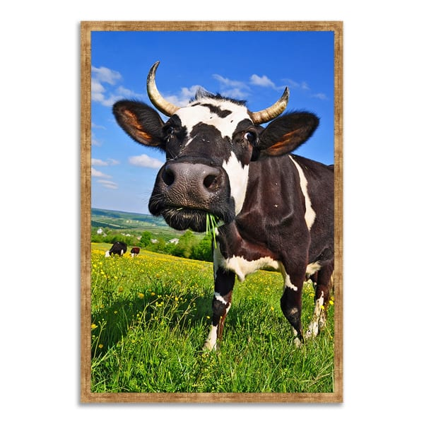 Framed Photograph Print 22 In. x 32 In. It's In The Milk Multi Color