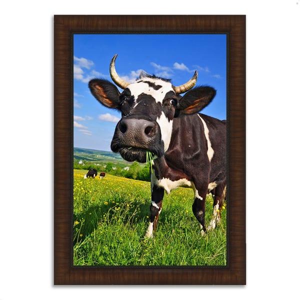 Framed Photograph Print 30 In. x 42 In. It's In The Milk Multi Color
