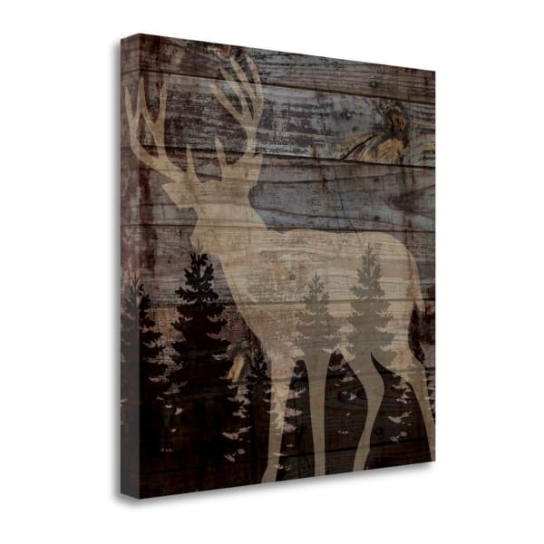 Rustic Deer By Piper Ballantyne 20 x 20 Gallery Wrap Canvas