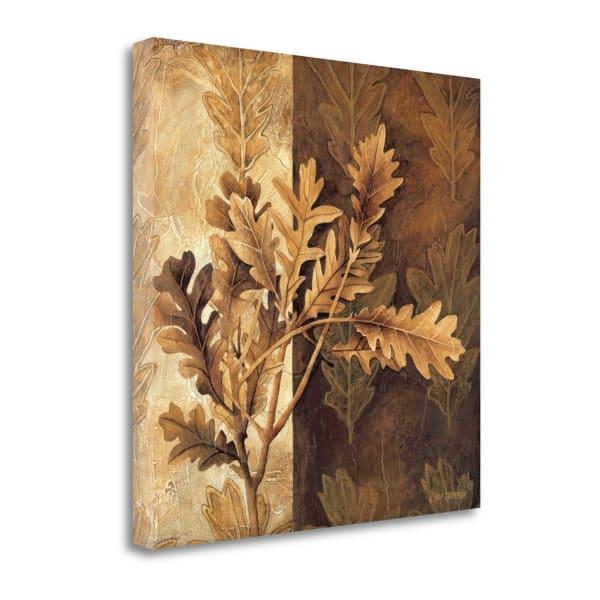 Leaf Patterns I By Linda Thompson 22 x 22 Gallery Wrap Canvas