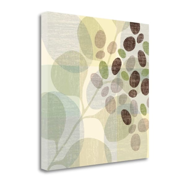 Spa I By Ahava 22 x 22 Gallery Wrap Canvas