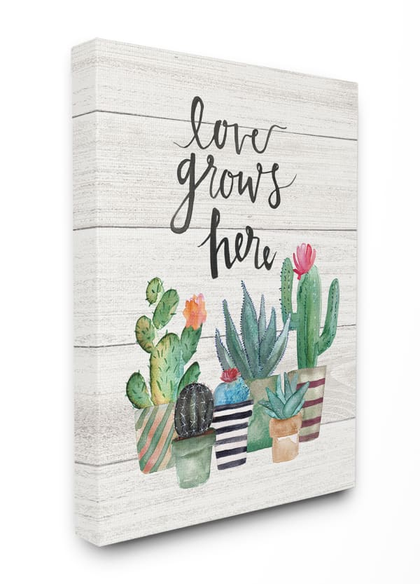 Cacti Love Grows 16x20 Stretched Canvas
