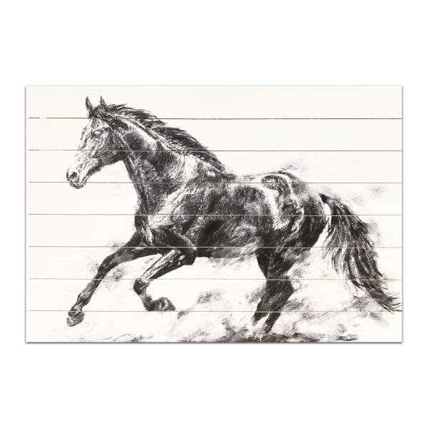 Charcoal Stallion Horse 24x36 Wood Wall Art