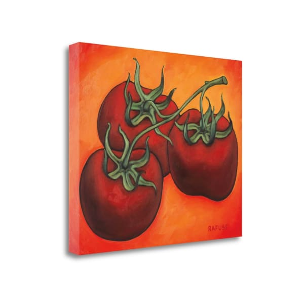 Fine Art Giclee Print on Gallery Wrap Canvas 23 In. x 19 In. Three Tomatoes By Will Rafuse Multi Color