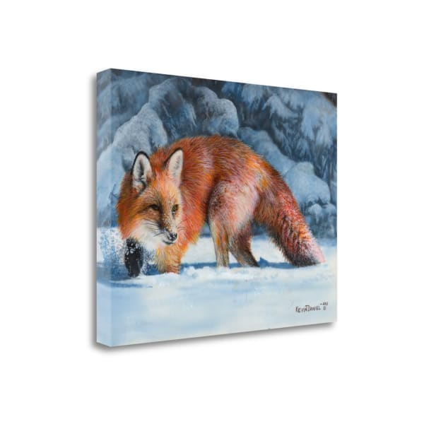 Fine Art Giclee Print on Gallery Wrap Canvas 23 In. x 18 In. Fox At The Pines By Kevin Daniel Multi Color