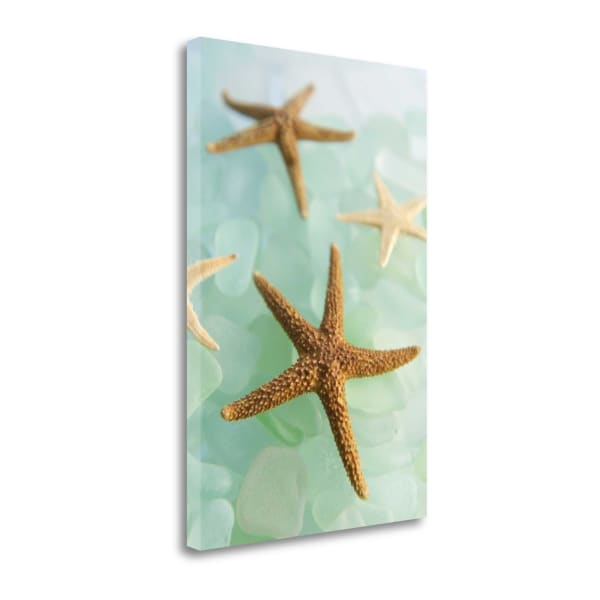 Crystal Cove - 30 By Alan Blaustein Wrapped Canvas Wall Art