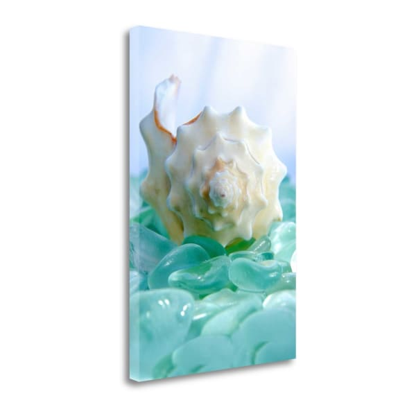 Crystal Harbor - 24 By Alan Blaustein Wrapped Canvas Wall Art
