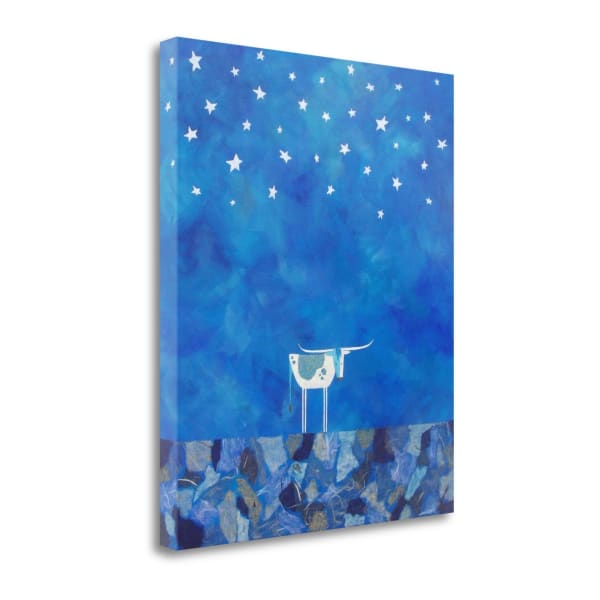 Stars At Night By Casey Craig Wrapped Canvas Wall Art
