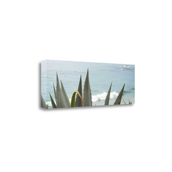 Spirit 2015 By Alan Blaustein Wrapped Canvas Wall Art