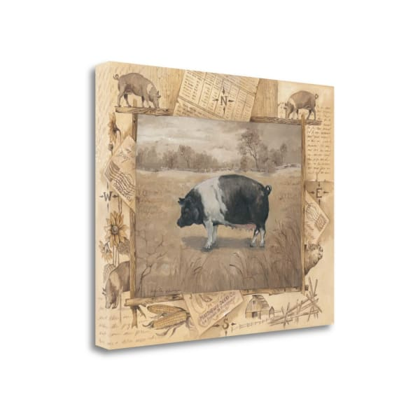 Pig By Anita Phillips Wrapped Canvas Wall Art