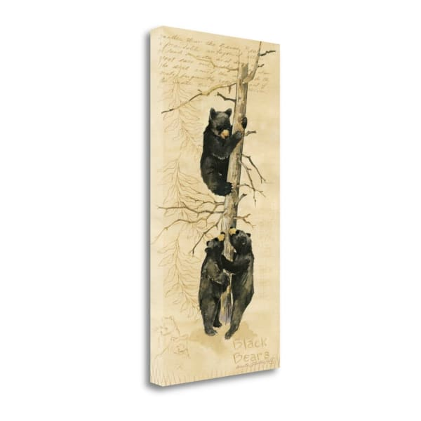 Black Bears By Anita Phillips Wrapped Canvas Wall Art
