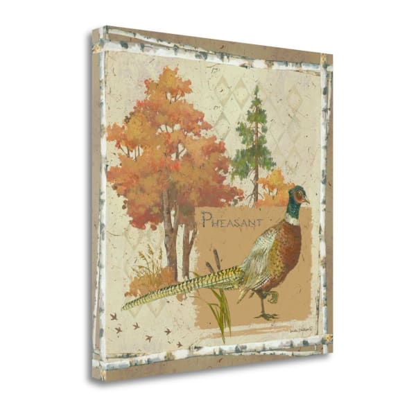 Pheasant By Anita Phillips Wrapped Canvas Wall Art