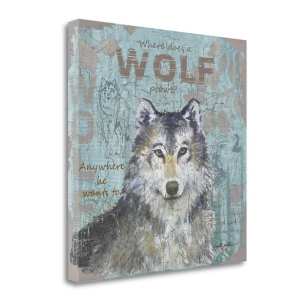 Where Does A Wolf Prowl By Anita Phillips Wrapped Canvas Wall Art