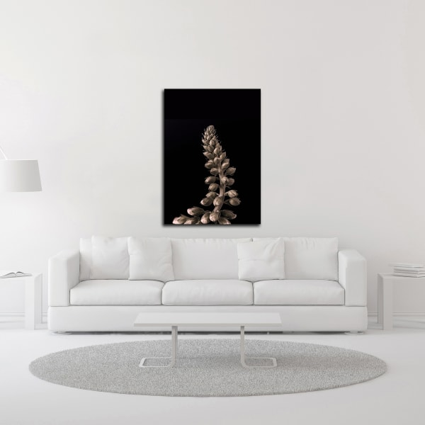 Upwards 2 by Design Fabrikken Wrapped Canvas Wall Art
