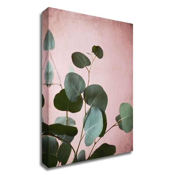 Sage Eucalyptus No. 2 by Lupen Grainne Wrapped Canvas Wall Art