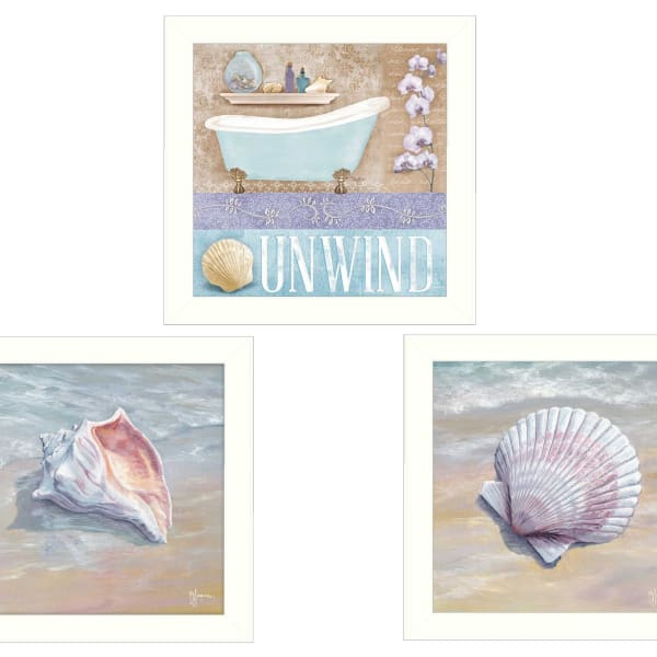Shells II Collection By Mollie B. and G. Janisse Framed Wall Art
