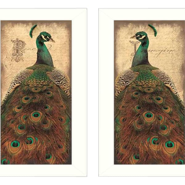 Peacock Collection By John Jones Framed Wall Art