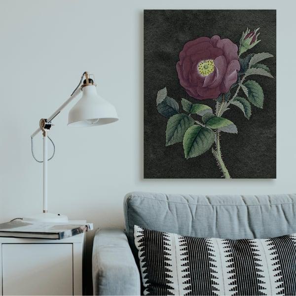 Purple Poppy Vintage Illustration Thorne Flower Super Oversized Stretc Pier 1