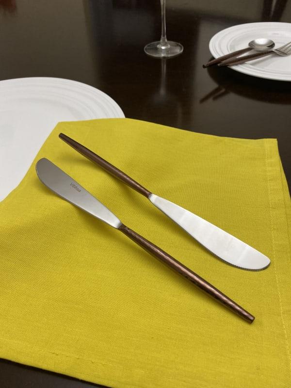 Stainless Steel Set of 6 Dinner Knives