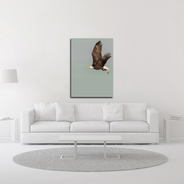 In the Sky 3 by Design Fabrikken Wrapped Canvas Wall Art