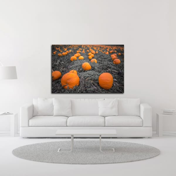 Sea of Pumpkins by Tim Oldford Wrapped Canvas Wall Art