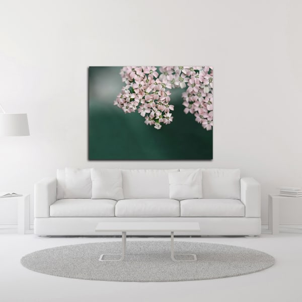 Blush Pink Flowers by Brooke T. Ryan Wrapped Canvas Wall Art
