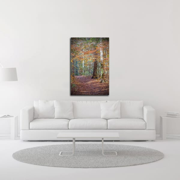 Rust Fall Forest by Brooke T. Ryan  Wrapped Canvas Wall Art