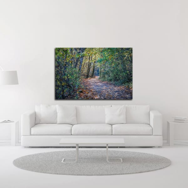 Fall Colours by Tim Oldford Wrapped Canvas Wall Art