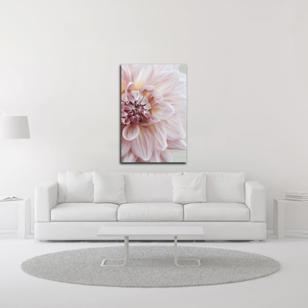 Blush Pink Dahlia by Brooke T. Ryan Wrapped Canvas Wall Art