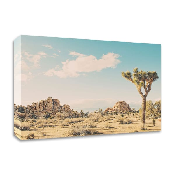 Winter in the Desert No. 3 by Myan Soffia Canvas Wall Art