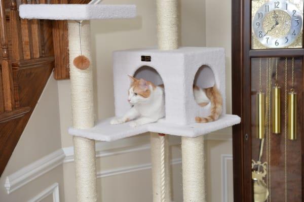 Ivory Classic Cat Tree