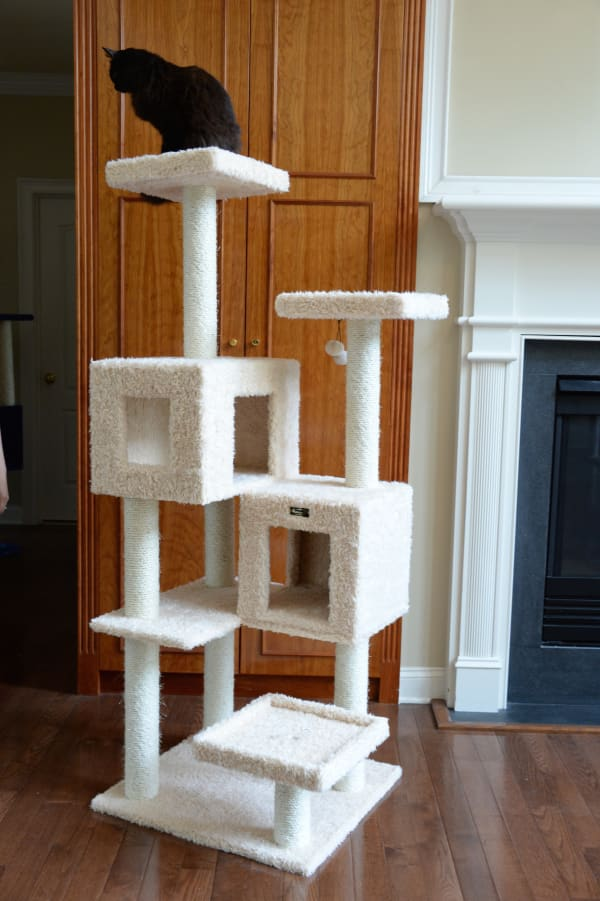 Multi-Level Cat Tree with Two Spacious Condos Perches for Kittens Pets Play