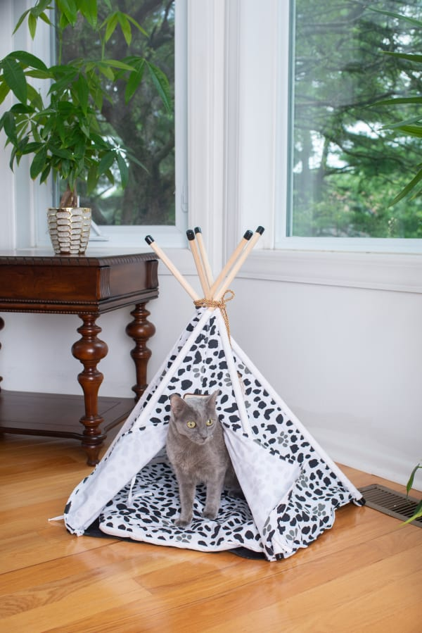 Pet Tent/Teepee Style with Durable Fabric Cat Bed
