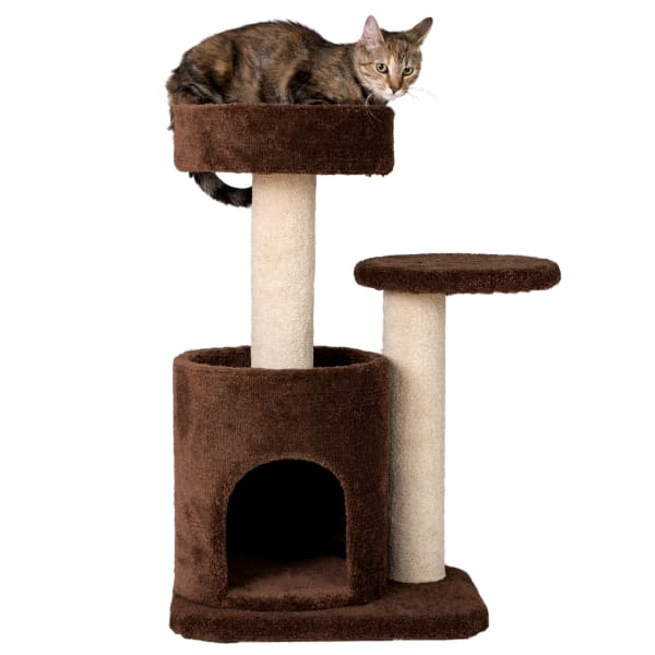 Chocolate Premium Carpeted Cat Tree