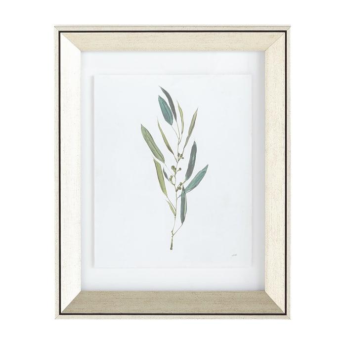 Bay Leaf Greenery Print Framed Art