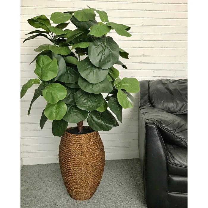 Fiddle-Leaf Fig Tree in a Rope Basket Silk Plant