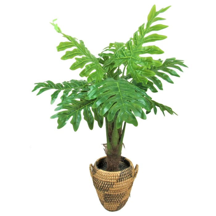 Sellom Deco  Philodendron Plant in Basket