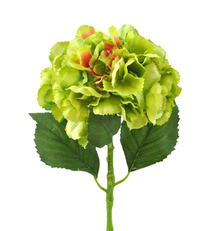 Flower Hydrangea Green (Set of 2)