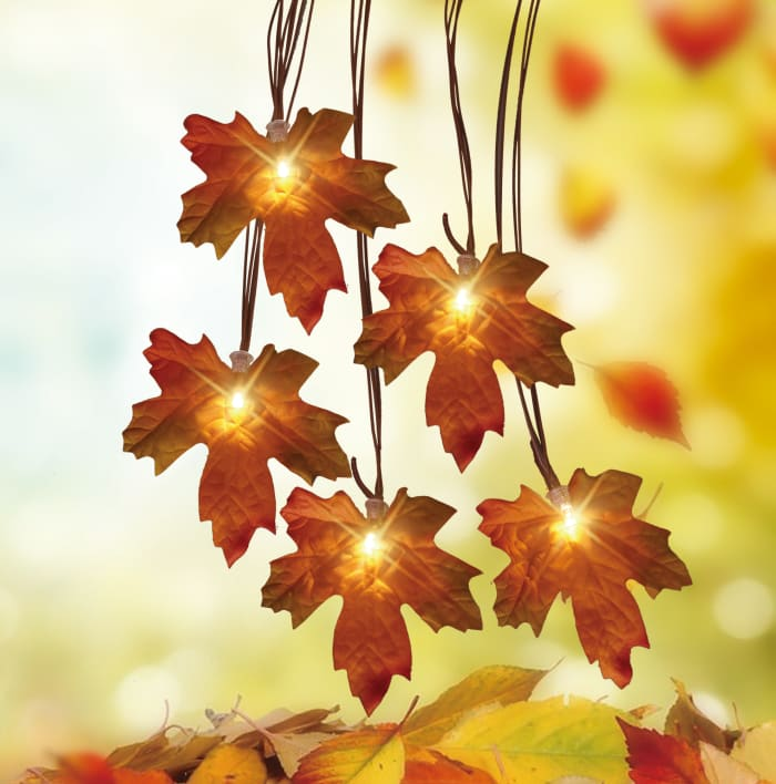 Warm White LED Maple Leaf Autumn Harvest B/O Lights - Brown Wire