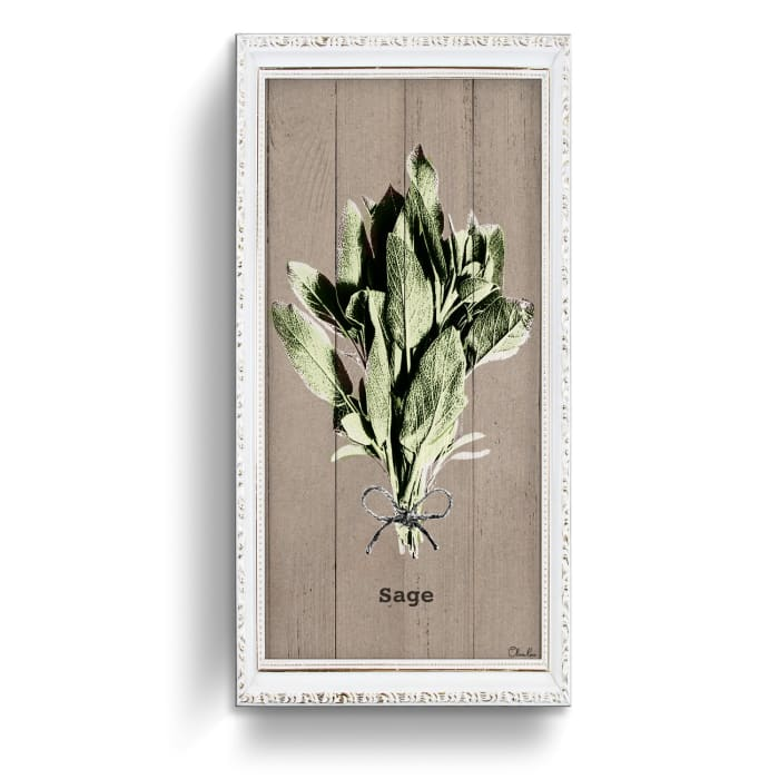 Sage Herb Green Canvas Wall Art