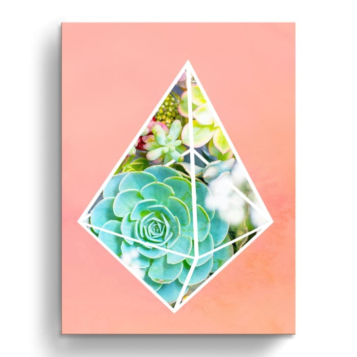 Prism Garden II Pink Canvas Wall Art