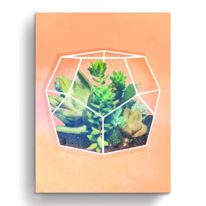 Succulent Prism II Orange Canvas Wall Art