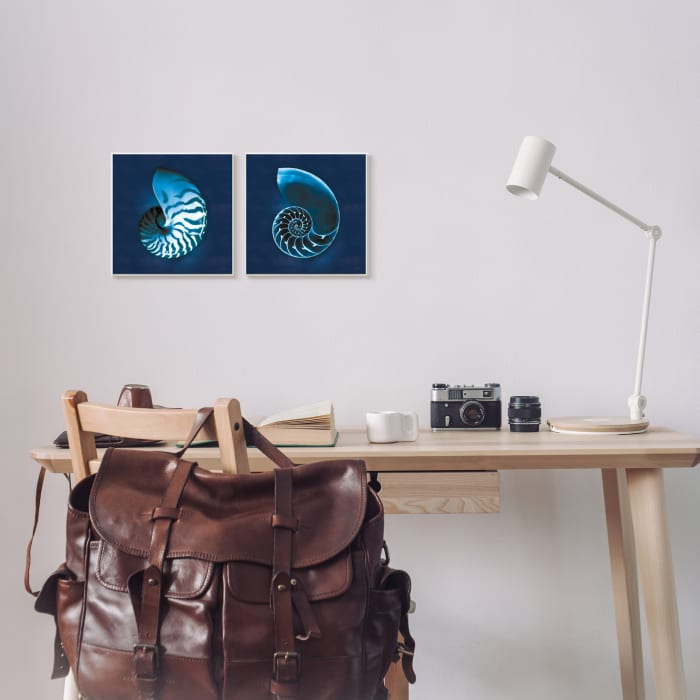 Blue Spiral Nautilus Shell with Interior Pattern 2pc Wall Plaque Art Set by Sue Schlabach 12 x 12