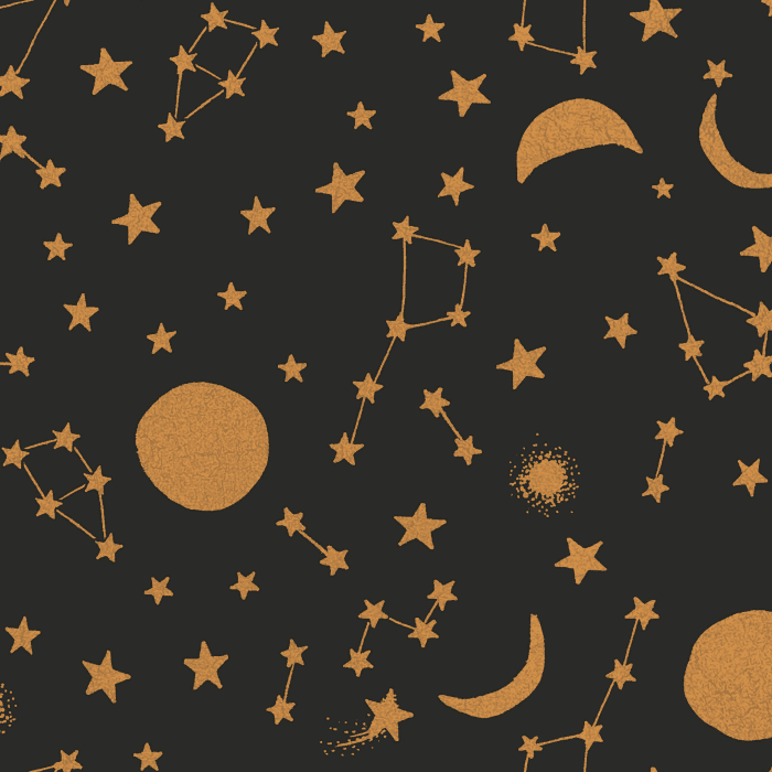 Celestial Midnight & Gold Self-Adhesive Border Removable Wallpaper