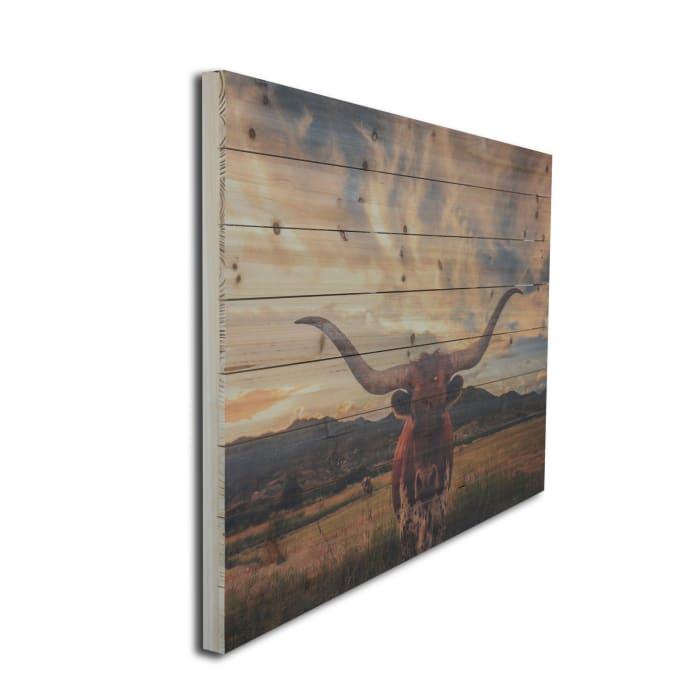 Longhorn Wooden Planked Wall Art