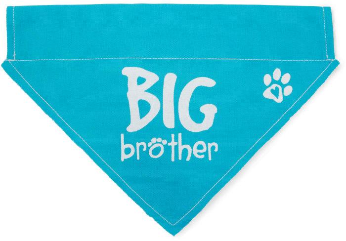 Big Brother Large Slip on Pet Bandana