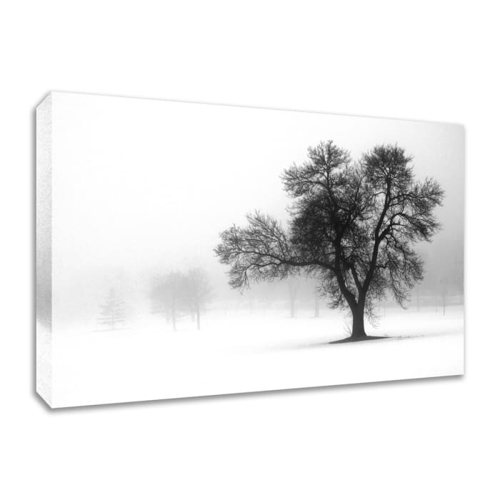 Fine Art Giclee Print on Gallery Wrap Canvas 30 In. x 20 In. Reaching Out Multi Color