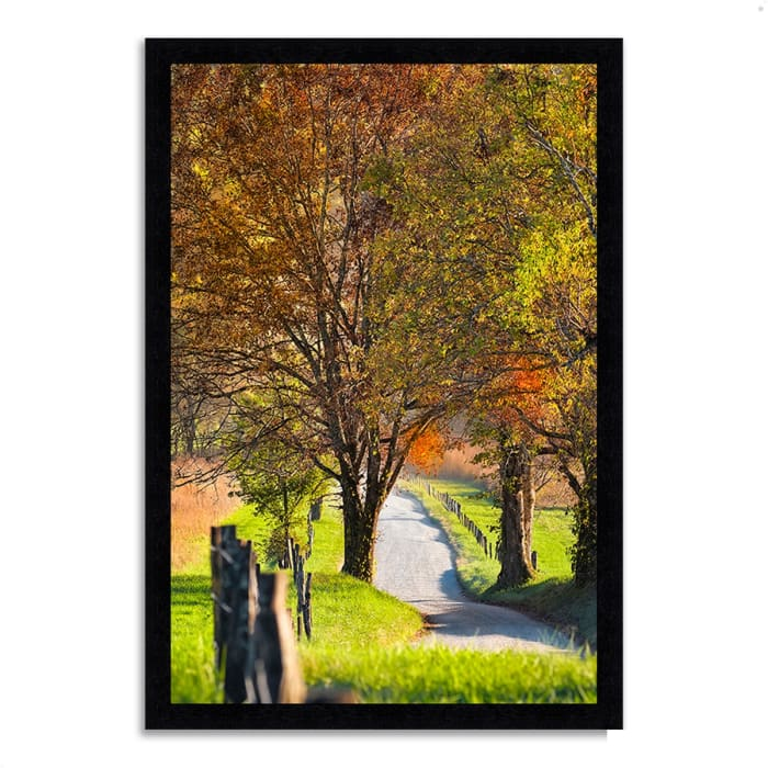 Framed Photograph Print 33 In. x 46 In. Country Road I Multi Color